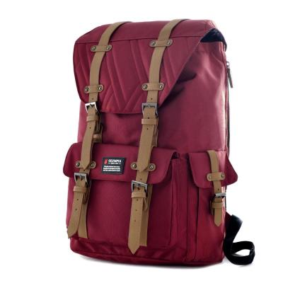 HOPKINS 18 in. Wine Backpack