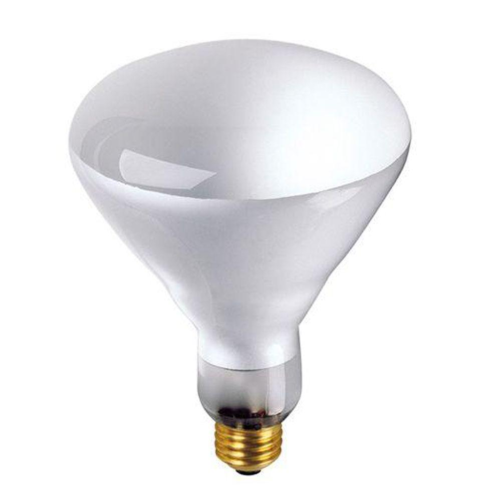 Bulbrite 65-Watt Incandescent BR40 Light Bulb (10-Pack)