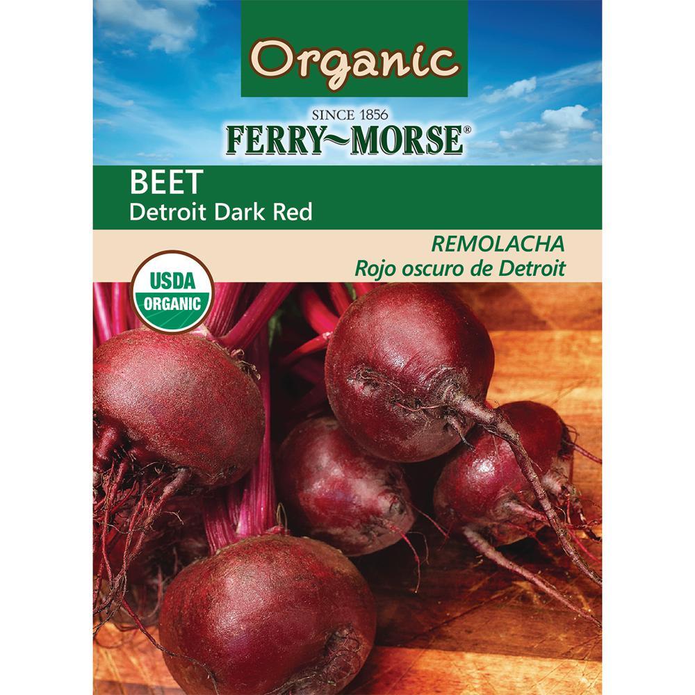Beet Detroit Dark Red Organic Seed