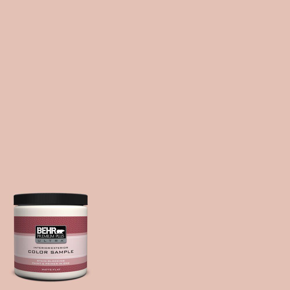 BEHR Premium Plus Ultra 8 oz. #S180-2 Sunwashed Brick Interior/Exterior Paint Sample