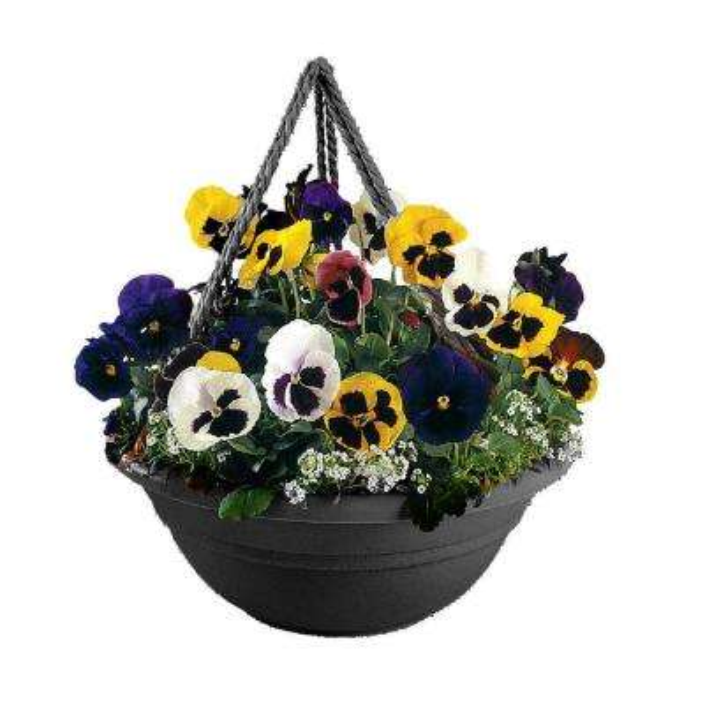 17 in. Black Plastic Milano Hanging Basket