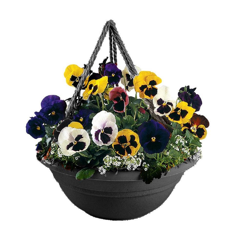 17 x 6.5 Black Milano Plastic Hanging Basket