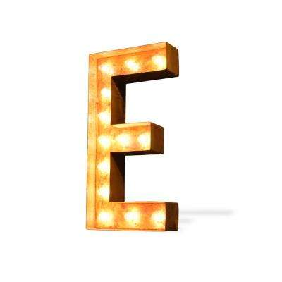Modern American 24 in. High Rusted Steel Alphabet Letter E Plug-In Marquee Lights