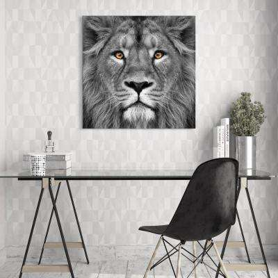 """38 in. x 38 in. """"King of the Jungle Lion"""" Frameless Free Floating Tempered Glass Panel Graphic Art"""