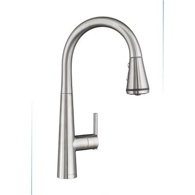 Edgewater Single-Handle Pull-Down Sprayer Kitchen Faucet with SelctFlo in Stainless Steel