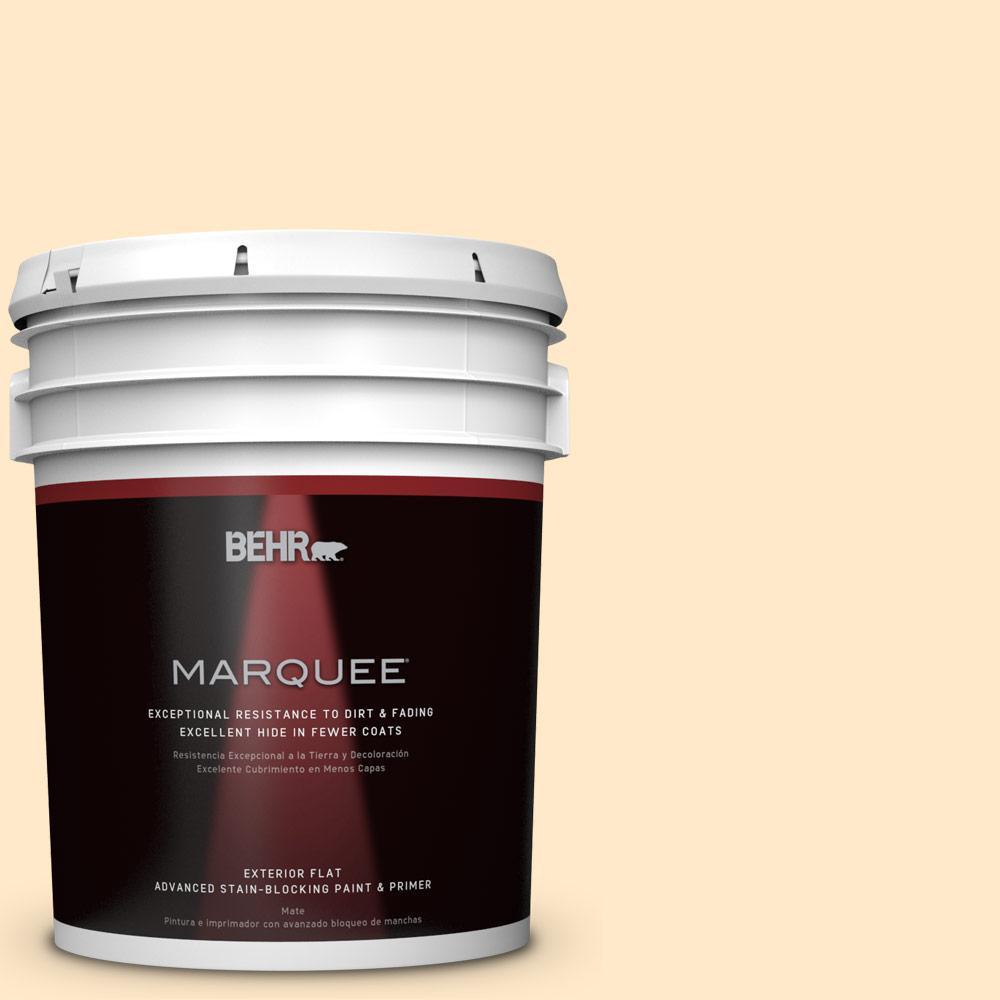 BEHR MARQUEE 5-gal. #M290-2 Frittata Flat Exterior Paint