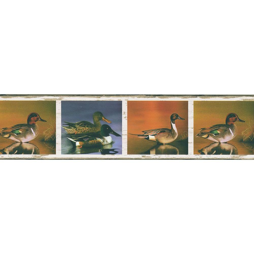 Brewster multi color duck pond wallpaper border sample for Brewster wallcovering wood panels mural 8 700