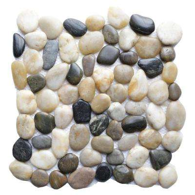Multi 12 in. x 12 in. Natural Pebble Stone Floor and Wall Tile (10 sq. ft. / case)