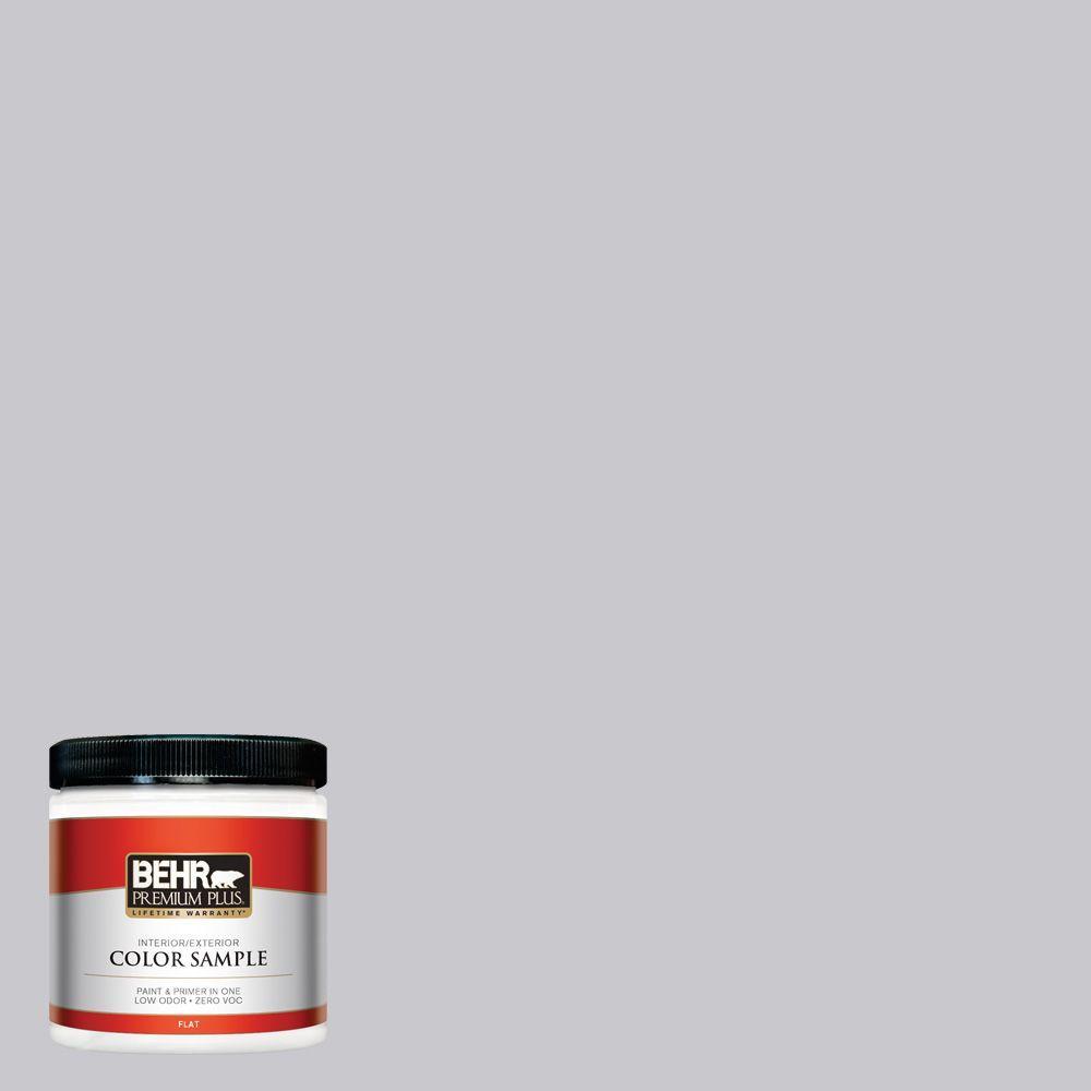 8 oz. #ECC-62-1 Urban Gray Interior/Exterior Paint Sample
