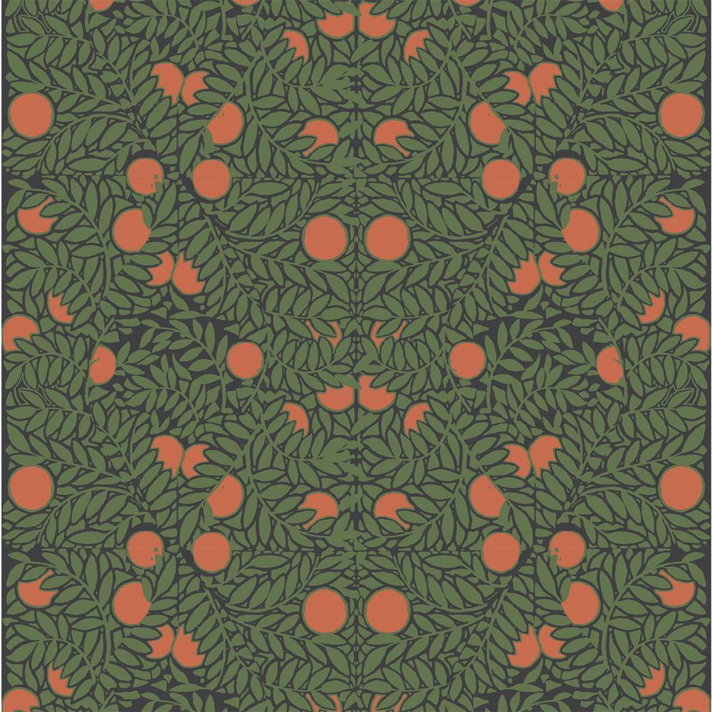Mitchell Black Debut Collection Orange Bush in Forest/Orange Premium Matte Wallpaper