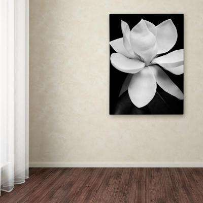"""35 in. x 47 in. """"Magnolia"""" by Michael Harrison Printed Canvas Wall Art"""