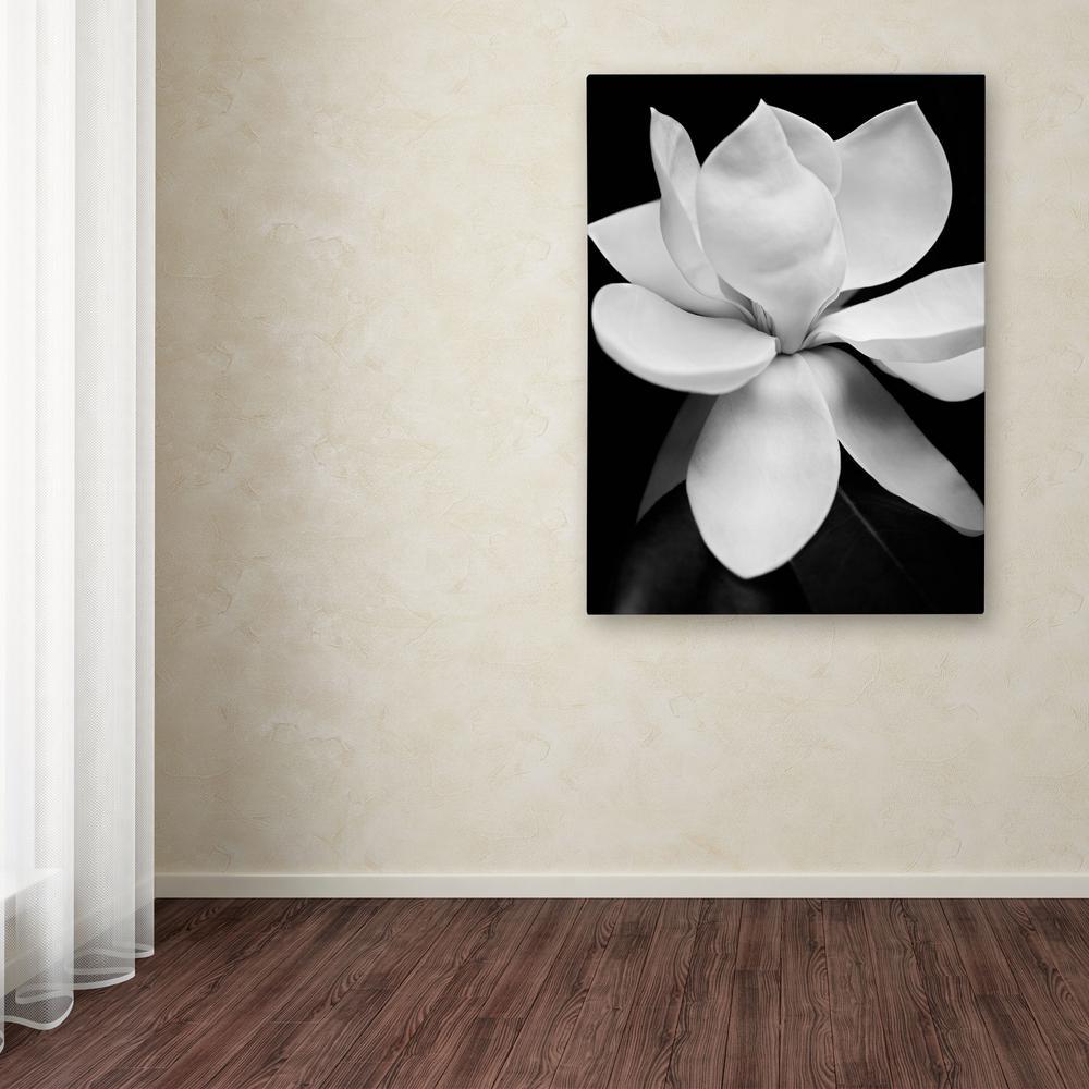 18 by 18-Inch Canvas Wall Art Gardenia  by Michael Harrison