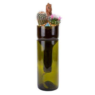 Wine Bottle Self-Watering Cactus Planter