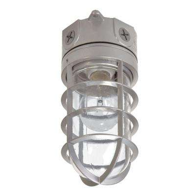 100-Watt Gray Incandescent Outdoor Flushmount Vapor Tight Light Fixture