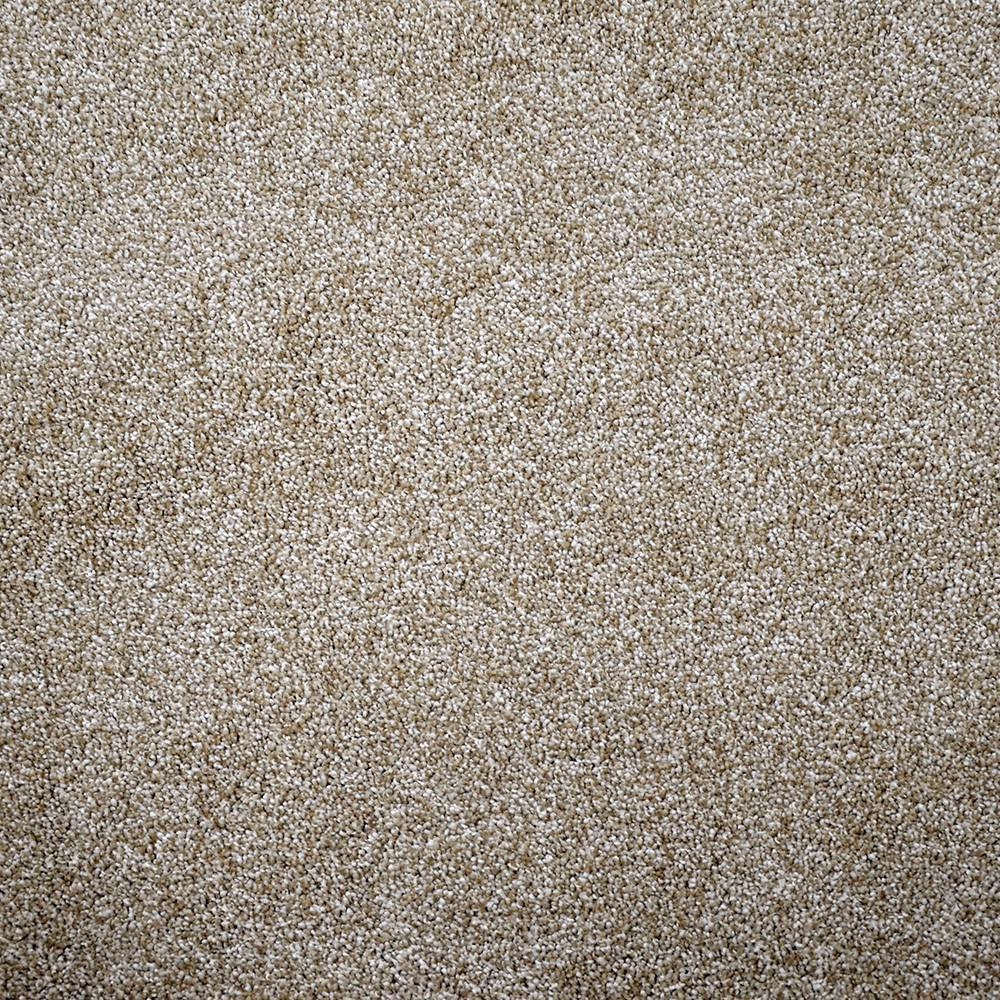 Carpet Sample - Soft Breath II - Color Oakshire Texture 8 in. x 8 in.