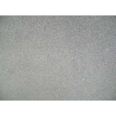 3 in. x 3 in. Granite Countertop Sample in Meteorite White