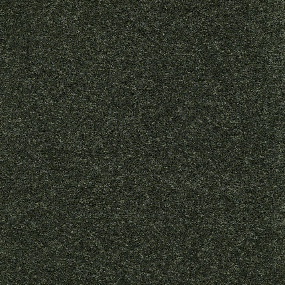 Carpet Sample-Enraptured II - Color Boxwood Texture 8 in x 8