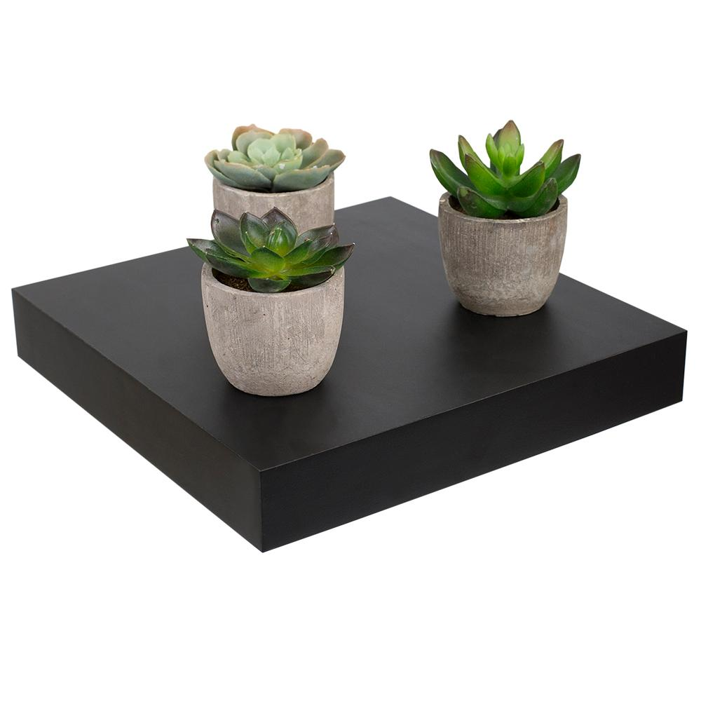 Home Basics 9.25 in. x 9.25 in. x 9.25 in. Black Short Rectangle Floating Shelf was $18.0 now $11.0 (39.0% off)