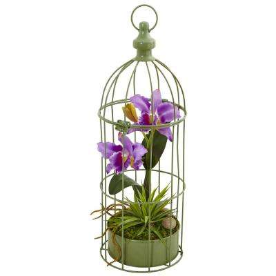 Indoor Cattleya Orchid Silk Arrangement in Decorative Bird Cage