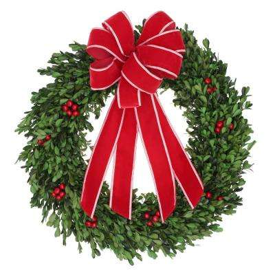 22 in. Boxwood Leaf Wreath with Plastic Leaf in Red Berry