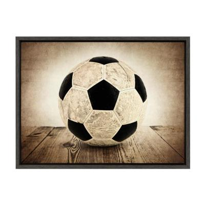 "Sylvie ""Vintage Soccer on Wood"" by Saint and Sailor Studios Sports Framed Canvas  Wall Art 24 in. x 18 in."