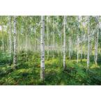 Sunny Day Nature Wall Mural