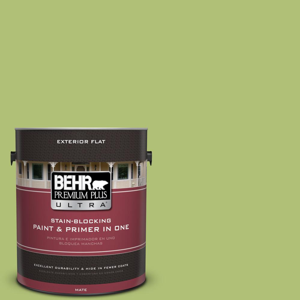 1 gal. #HDC-SM14-5 Lavish Lime Flat Exterior Paint