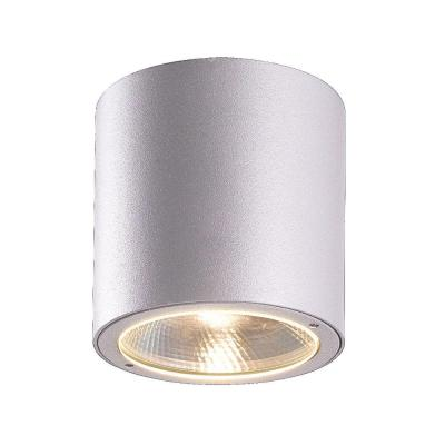 Sky Collection 1-Light Marine Grey Outdoor LED Flush Mount