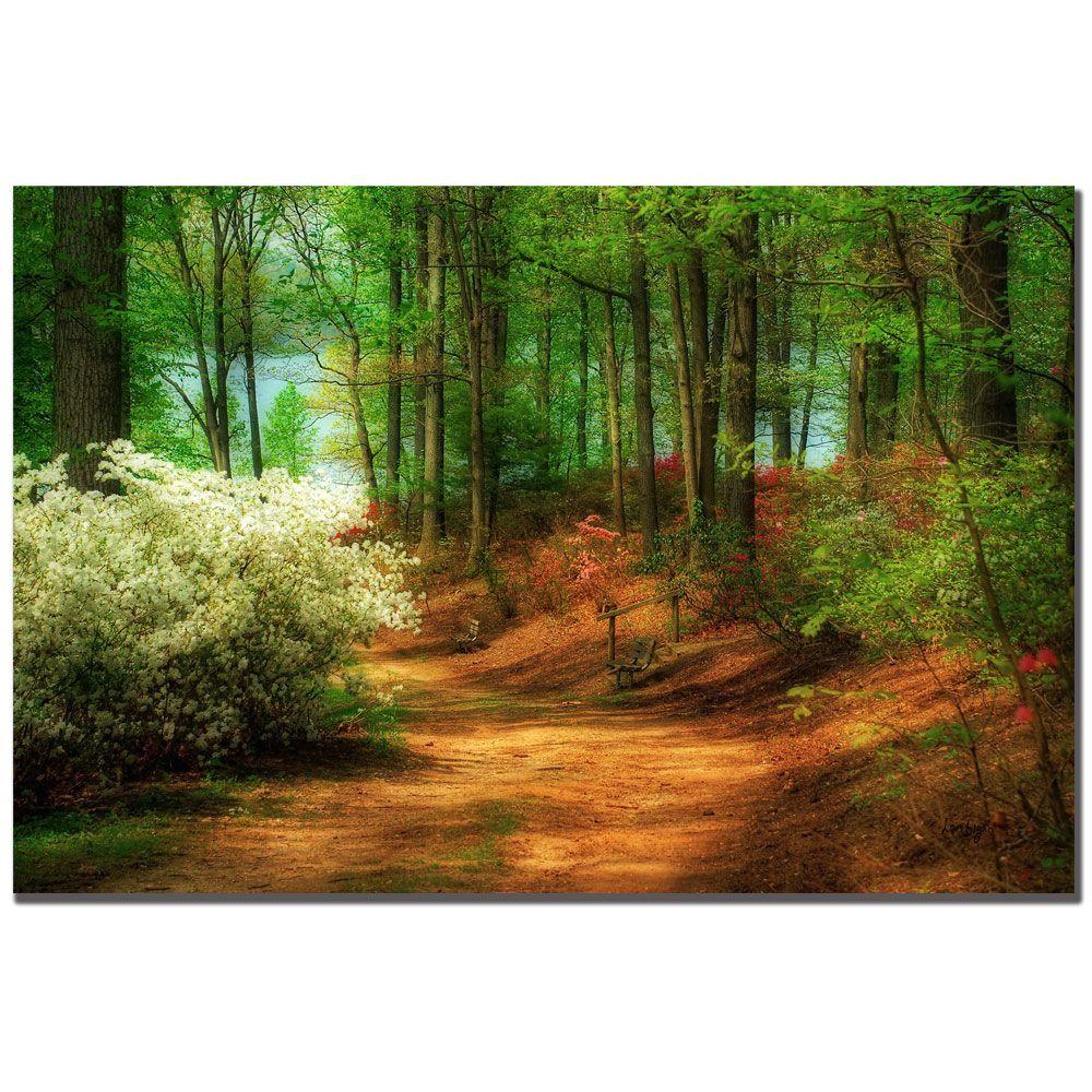 24 in. x 16 in. Favorite Path Canvas Art