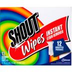 Multi-Purpose Instant Stain Remover Wipes (12-Pack)