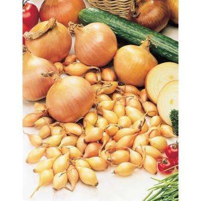 Ebenezer Yellow Onion Set (80-Bulbs Per Package)