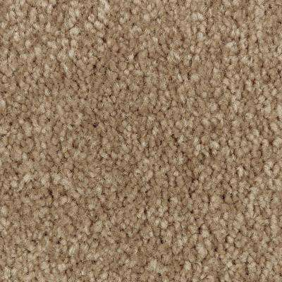 Carpet Sample - Mason II - Color Pebble Path Texture 8 in. x 8 in.