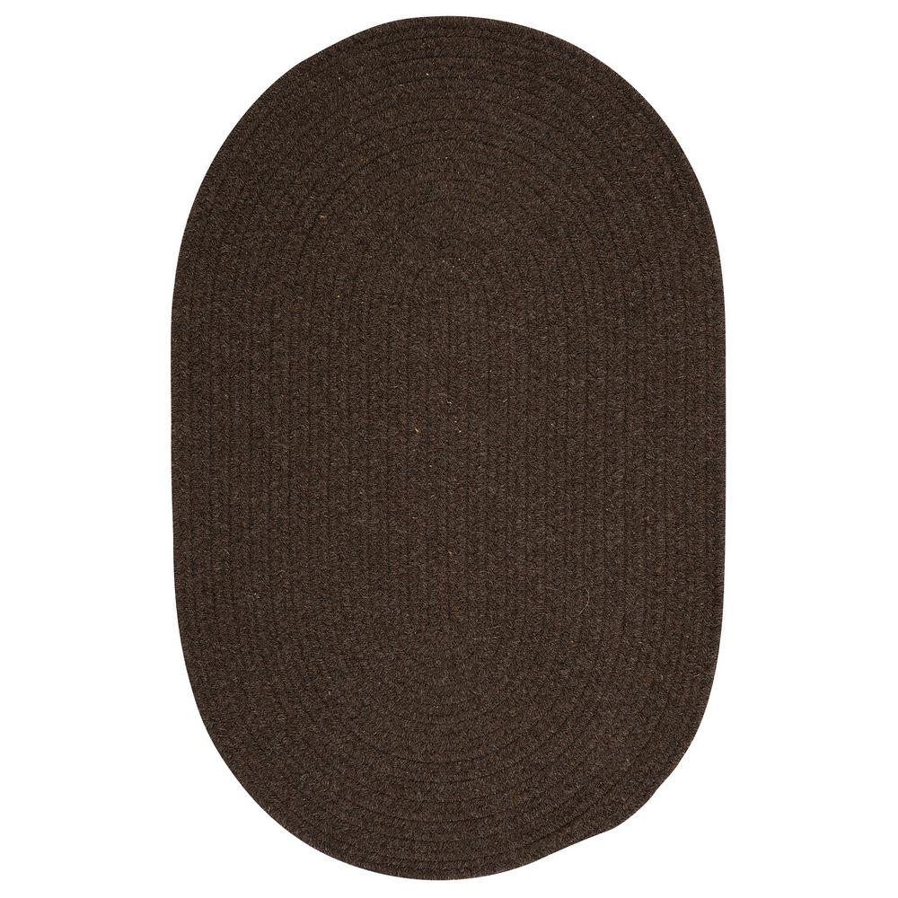 Edward Dark Brown 2 ft. x 3 ft. Braided Area Rug