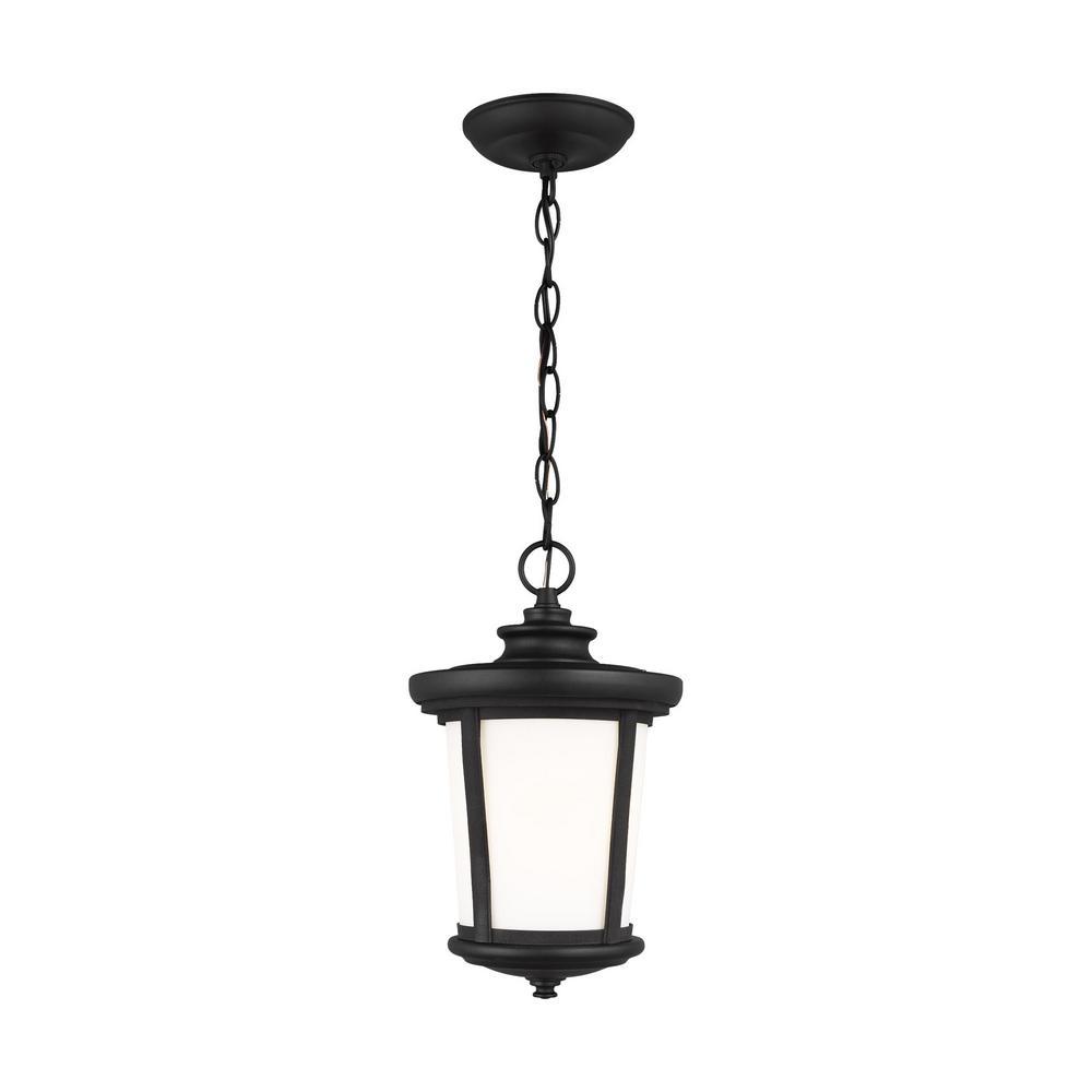 Eddington 1-Light Black Outdoor Pendant Light