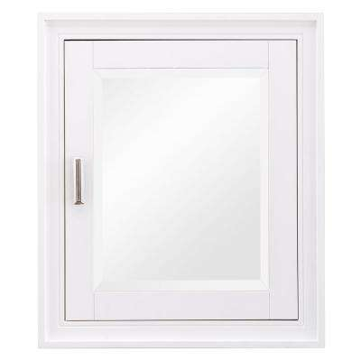 Shaelyn 24 in. W x 28 in. H Surface Mount Mirrored Medicine Cabinet in White