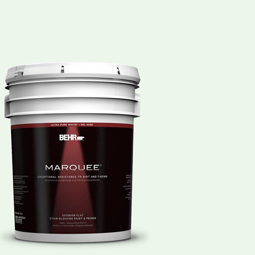 BEHR MARQUEE 5-gal. #440A-1 Parsnip Flat Exterior Paint