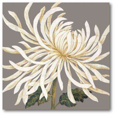 "30 in. x 30 in. ""Glorious Whites I"" Gallery Wrapped Canvas Printed Wall Art"
