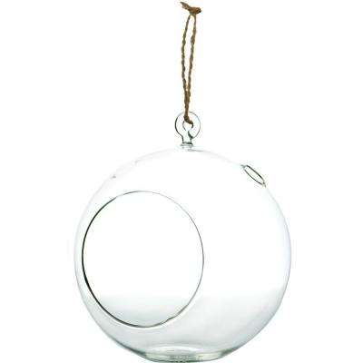 Mika 7 in. x 8 in. Glass Hanging Globe Terrarium with Rope