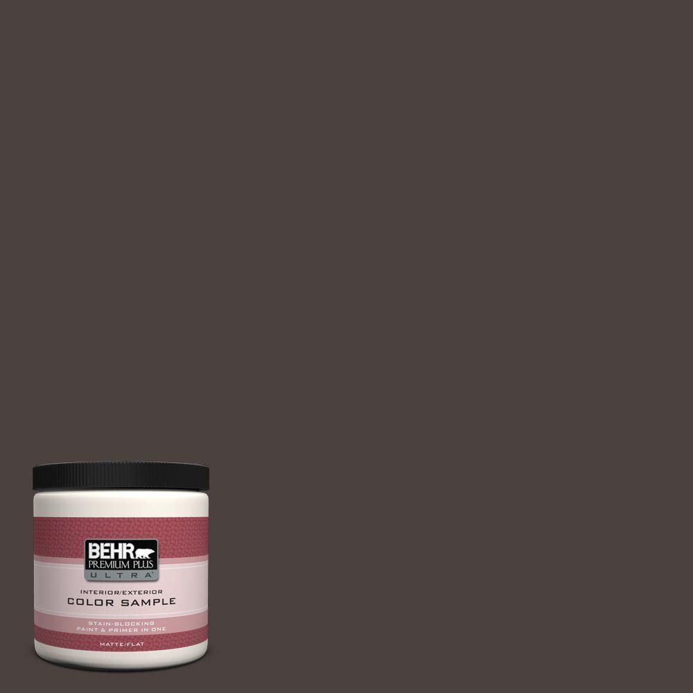 BEHR Premium Plus Ultra 8 oz. #PPU5-20 Sweet Molasses Interior/Exterior Paint Sample