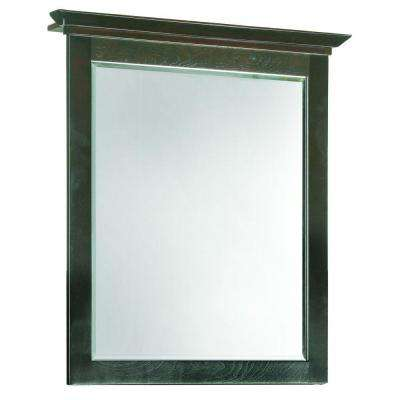 Ventura 30 in. L x 24 in. W Framed Wall Mirror with Top in Espresso