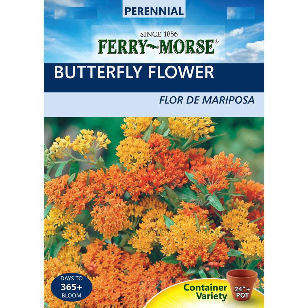 Ferry Morse Butterfly Flower Seed 1021 The Home Depot