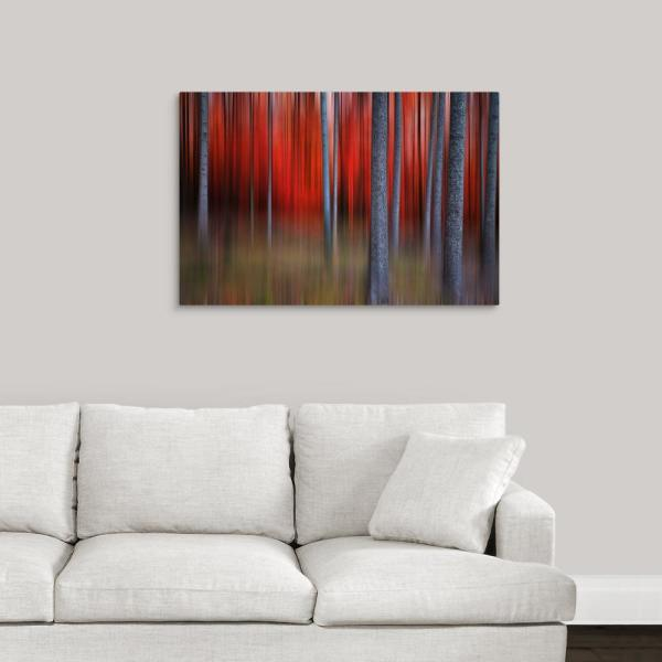 GreatBigCanvas ''Gimick'' by Philippe Sainte-Laudy Canvas Wall Art 1035535_24_36x24