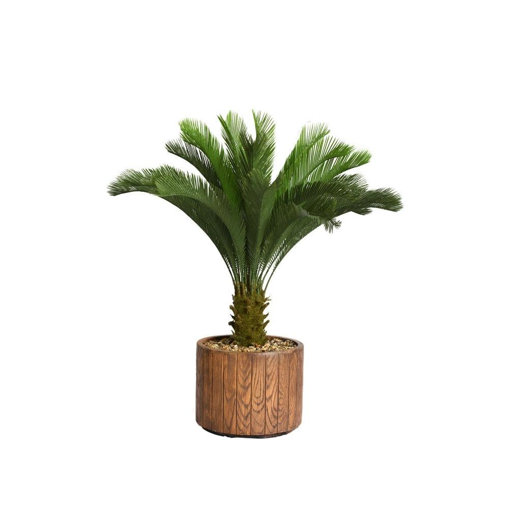 53 in. Tall Cycas Palm Tree in 16 in. Fiberstone Planter
