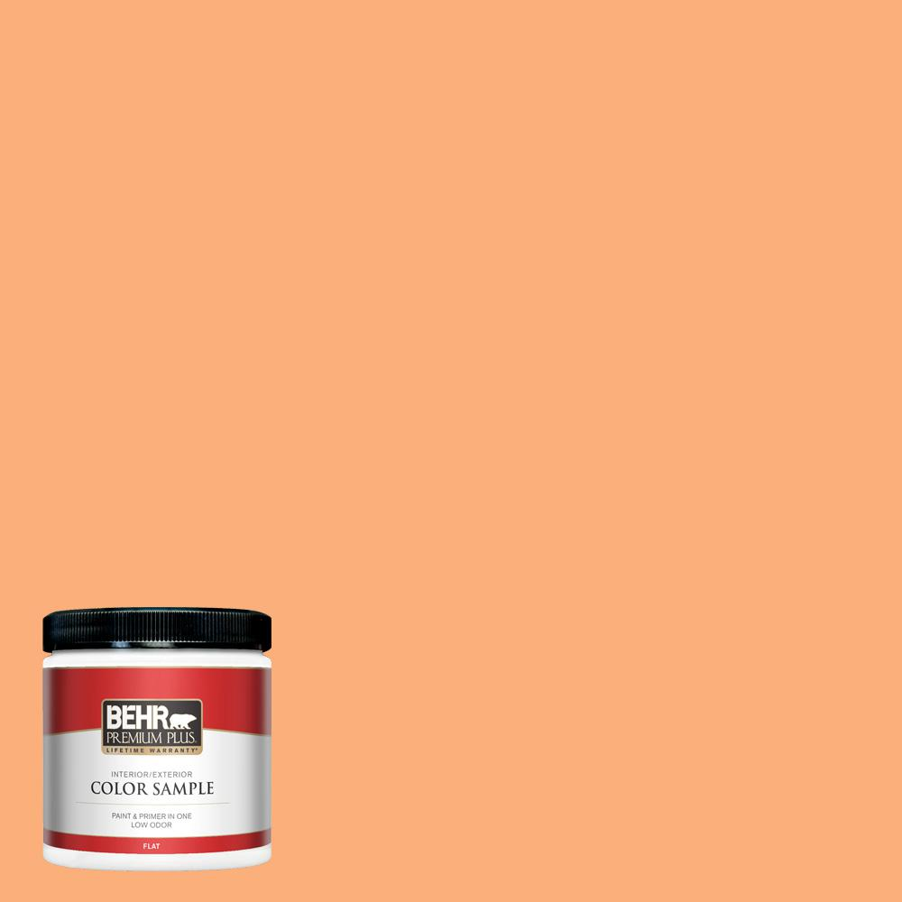 Behr Premium Plus 8 Oz 260b 5 Cantaloupe Slice Flat Interior Exterior Paint And Primer In One Sample Pp10416 The Home Depot These fruits are packed in vacuum packages eliminating oxygen, which in turn. behr premium plus 8 oz 260b 5 cantaloupe slice flat interior exterior paint and primer in one sample