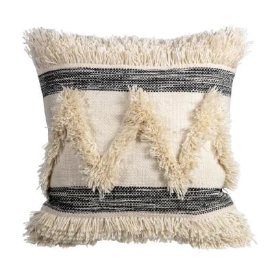 Striped Fringe Square Outdoor Throw Pillow (2-Pack)