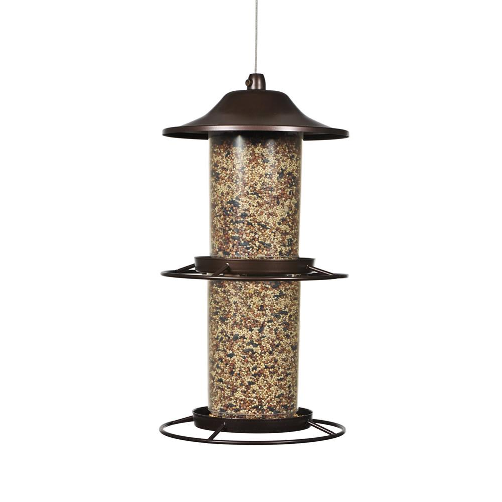 gms prices at in wild dp refill buy low food feeder online amazon bird india your jimmy