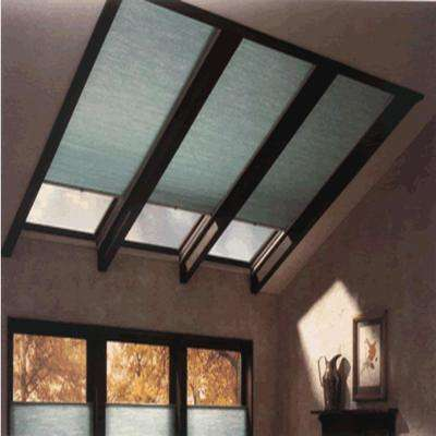 Custom Color Room Darkening Skylight Cellular Shades