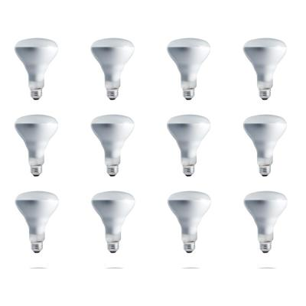 65-Watt BR30 Incandescent 130-Volt Flood Light Bulb (12-Pack)