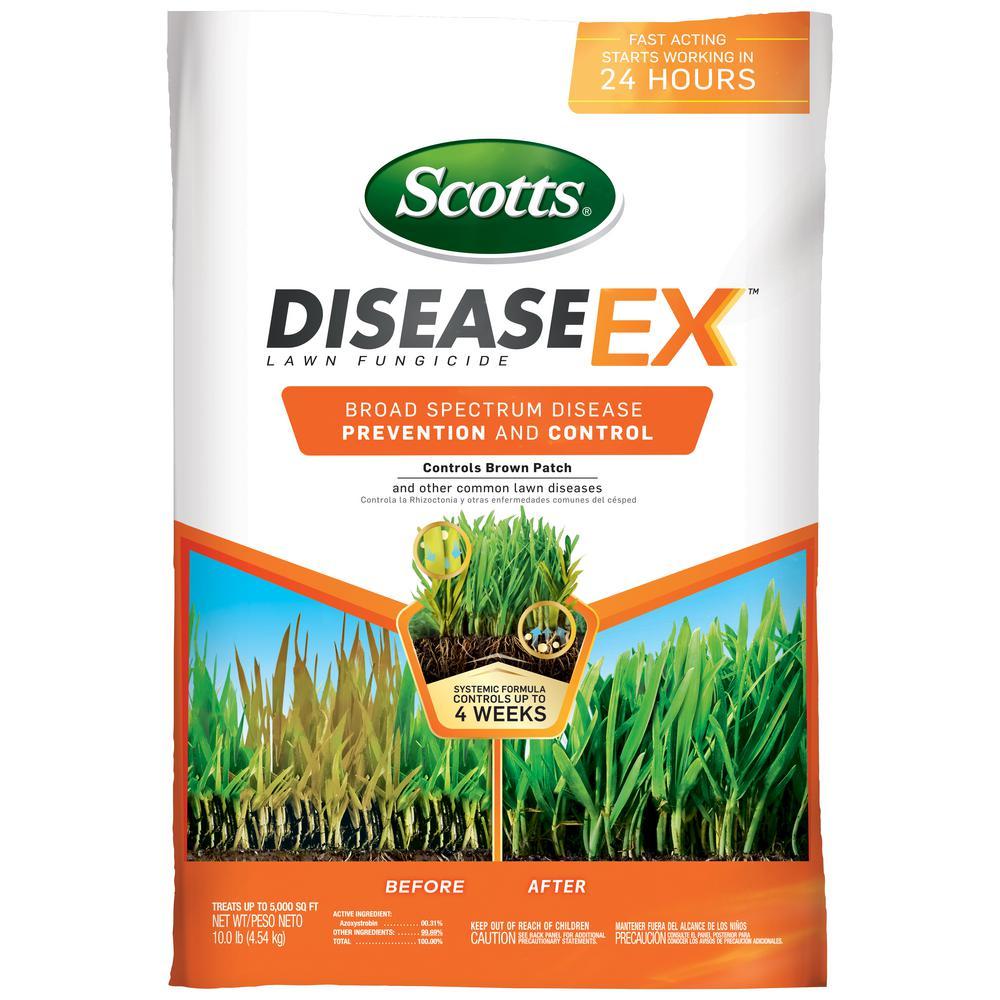 5M Disease Ex