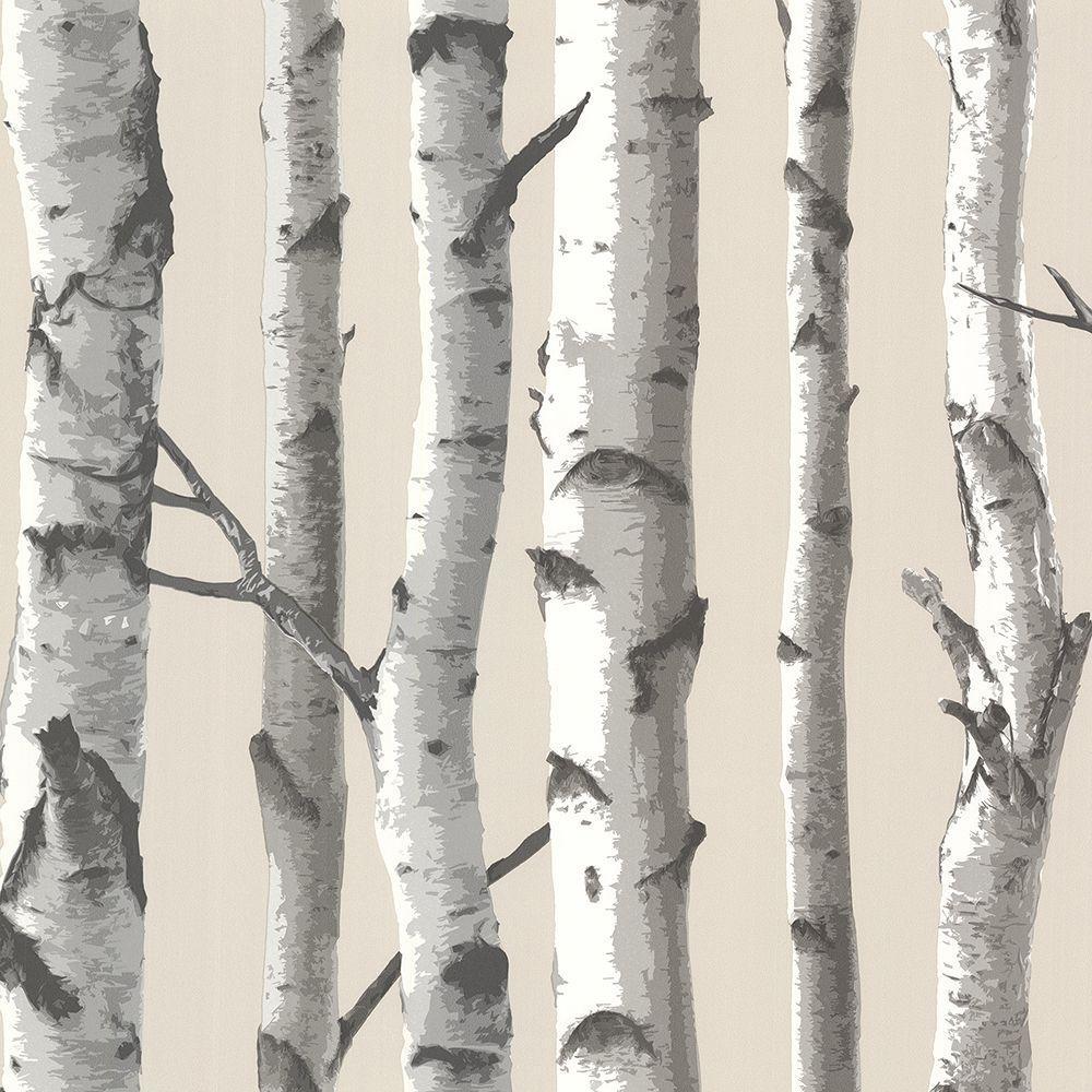 Tuxbury Beige Birch Tree Beige Wallpaper Sample